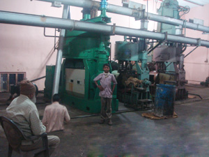 Cotton Seed Oil Pressing Plant