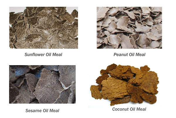 oil meal uses
