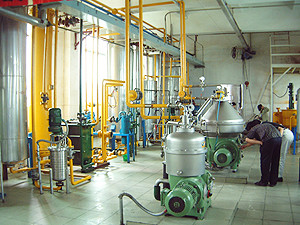 Strat Small Complete Oil Mill Production Line For Edible Oil