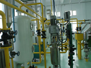 palm oil refining process plant