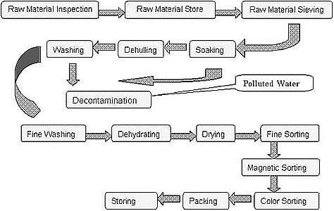 sesame hulling process