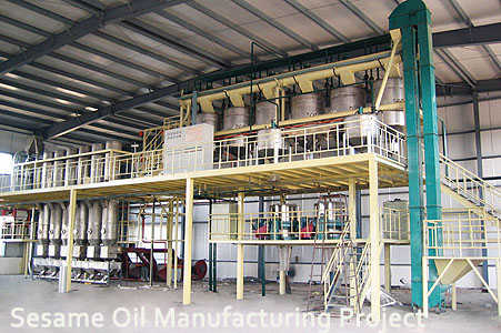 sesame oil manufacturing