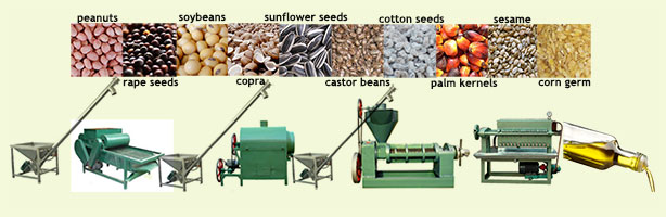 small cooking oil manufacturing unit and various seeds
