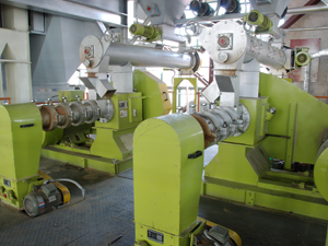 Soybean Extruding Plant