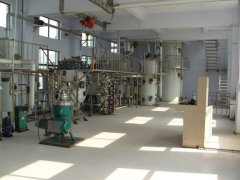 jatropha seeds oil production assembly line