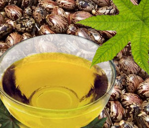 Refined Castor Bean Oil