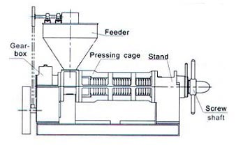 The Structure of Mechanical Screw Pressing Machinery