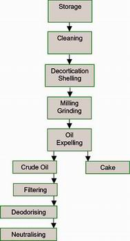 General Process of Cooking Oil Press Line