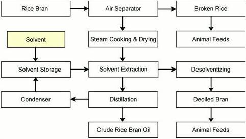 Oil Pressing Process of  Rice Bran Oil Extraction Line
