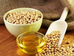 a quick analysis of soybean oil plant cost